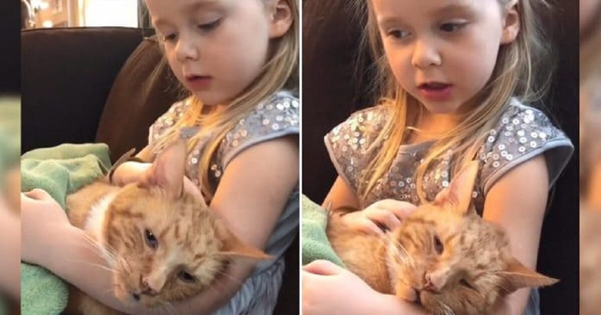Touching Moment When Little Girl Sings 'You Are My Sunshine' To Her Dying Cat